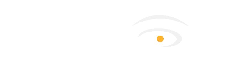 VizCon 2020